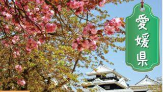 愛媛県の登録支援機関