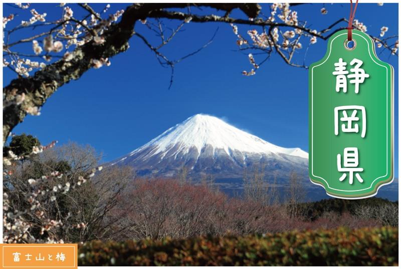 静岡県の登録支援機関