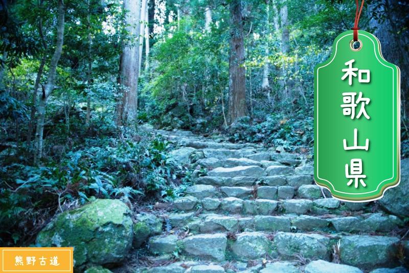 和歌山県の登録支援機関