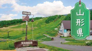 山形県の登録支援機関